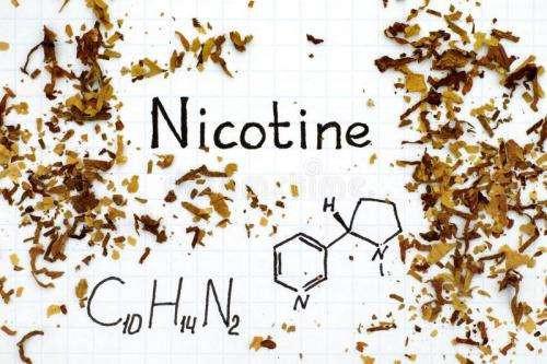 尼古丁对人体作用的一些看法