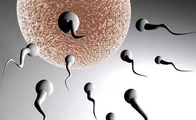 男性备孕可以抽烟吗?