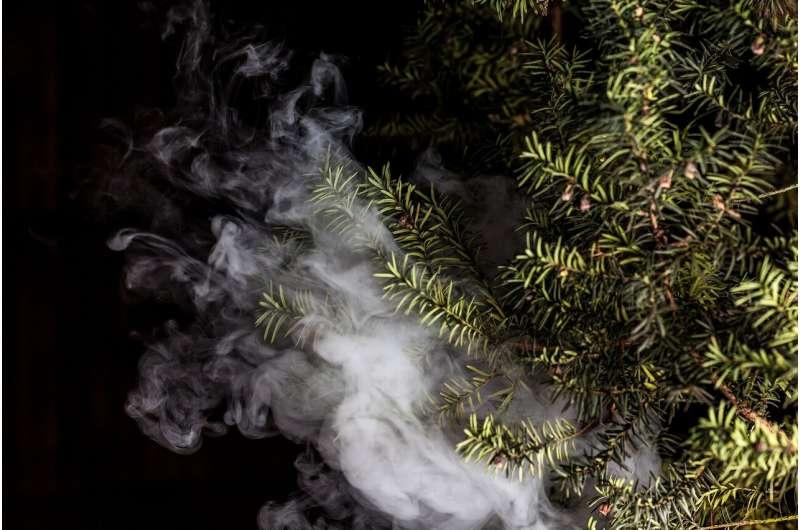 """世卫组织对""""有害""""电子雾化烟发出警告"""